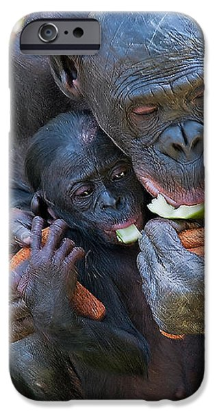 Bonobo 3 iPhone Case by Kenneth Albin