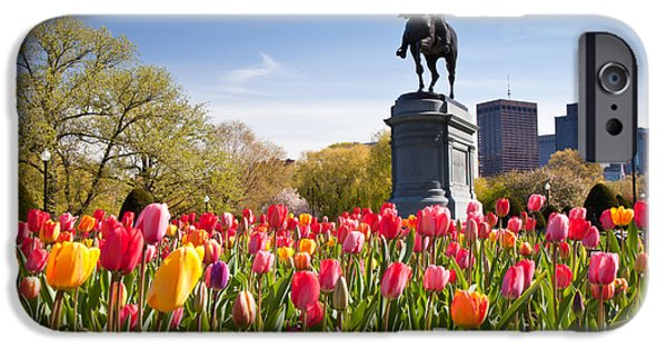 City. Boston iPhone Cases - Boston Public Garden Tulips iPhone Case by Susan Cole Kelly