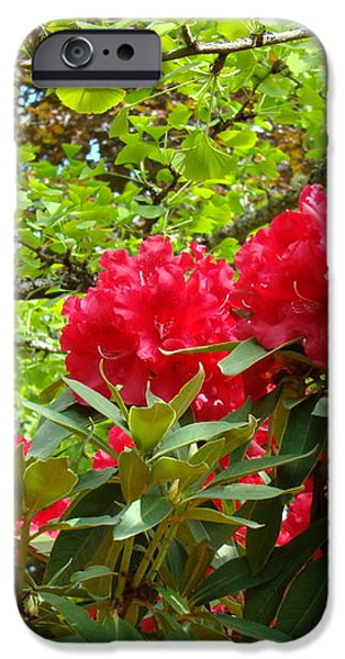 Botanical Garden Art Prints Red Rhodies Trees Baslee Troutman iPhone Case by Baslee TroutmanFine Art Prints Collections