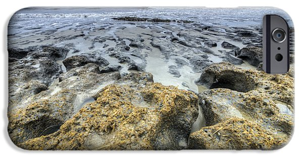 Botany iPhone Cases - Botany Bay Beach SC iPhone Case by Dustin K Ryan