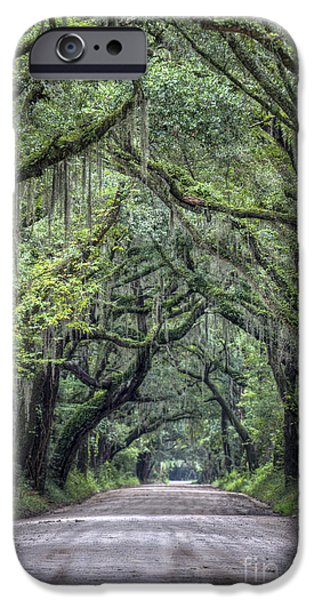 Botany Photographs iPhone Cases - Botany Bay Country Road iPhone Case by Dustin K Ryan