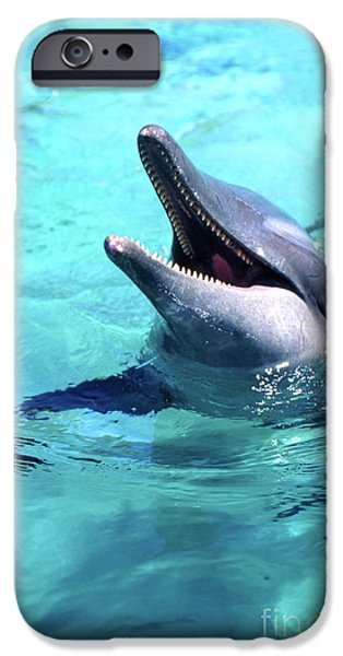 French Open iPhone Cases - Bottlenose Dolphin With Its Mouth Open iPhone Case by Beverly Factor