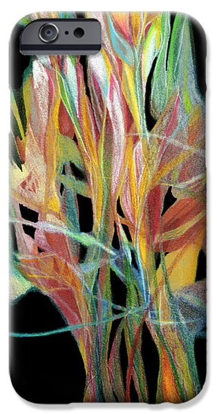 Colored Pencil Abstract Drawings iPhone Cases - Bouquet iPhone Case by Ann Powell