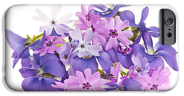Botanical Photographs iPhone Cases - Bouquet of spring flowers iPhone Case by Elena Elisseeva