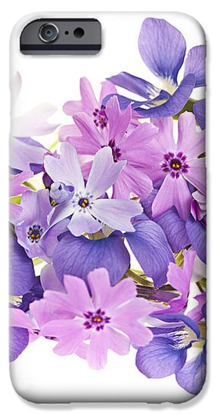 Bouquet of spring flowers iPhone Case by Elena Elisseeva