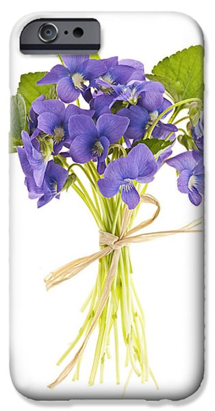 Violet Photographs iPhone Cases - Bouquet of violets iPhone Case by Elena Elisseeva