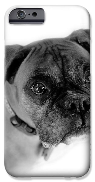 Boxer iPhone Cases - Boxer Dog iPhone Case by Marilyn Hunt
