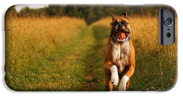 Dog Running. iPhone Cases - Boxer Dog Running Happily Through Field iPhone Case by Stephanie McDowell