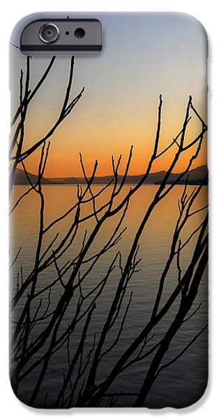 branches in the sunset iPhone Case by Joana Kruse