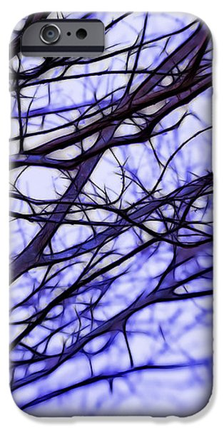 Branches in Winter iPhone Case by Judi Bagwell