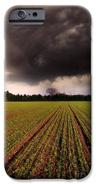 Field. Cloud iPhone Cases - Breaking Loose iPhone Case by Yhun Suarez