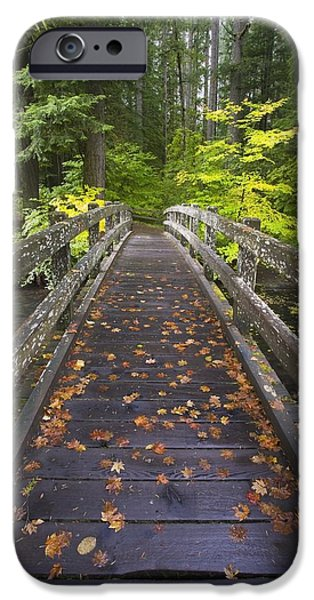 Fall Colour iPhone Cases - Bridge In A Park iPhone Case by Craig Tuttle