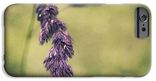 Decorativ iPhone Cases - Brin dherbe iPhone Case by Angela Doelling AD DESIGN Photo and PhotoArt
