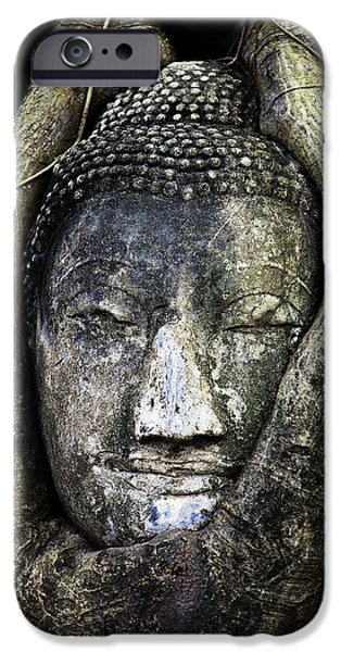 Prayer Digital Art iPhone Cases - Buddha Head in Banyan Tree iPhone Case by Adrian Evans