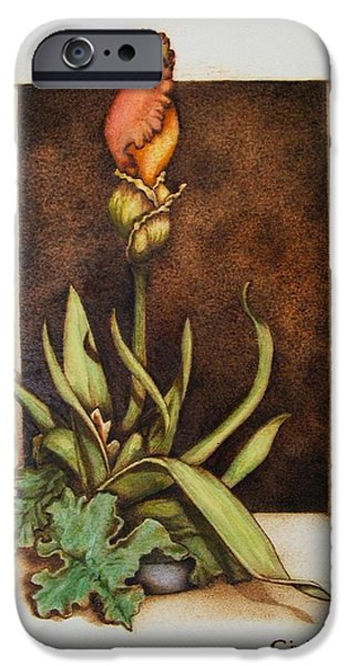 Water Colors Pyrography iPhone Cases - Budding Iris iPhone Case by Cynthia Adams