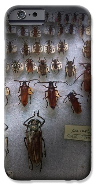Bug Collector - So what's bugging you iPhone Case by Mike Savad