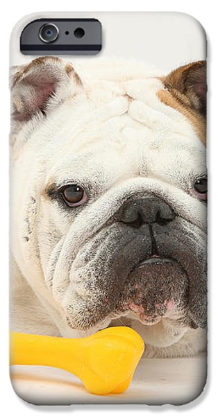 Bulldog With Plastic Chew Toy iPhone Case by Mark Taylor