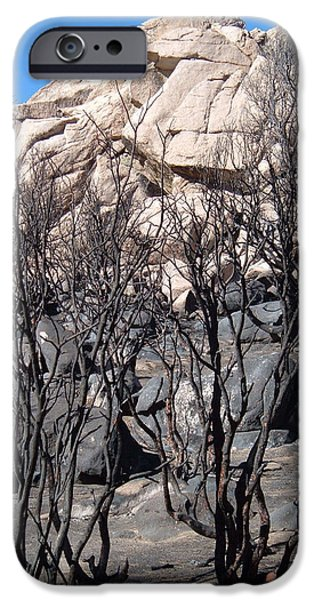 Burn iPhone Cases - Burned Forest 3 iPhone Case by Naxart Studio