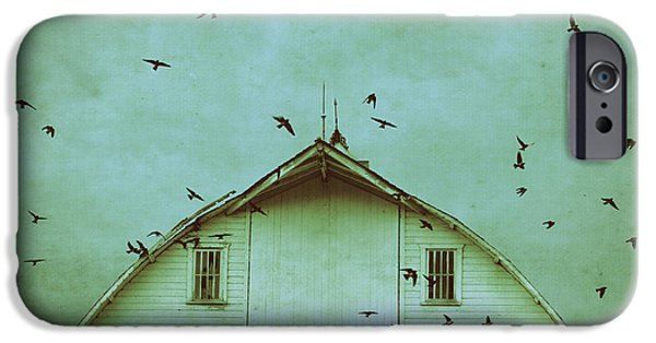 Barn Swallow iPhone Cases - Busy Barn iPhone Case by Julie Hamilton