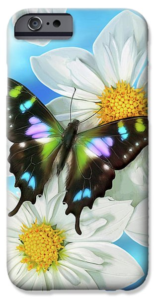 Butterfly Garden iPhone Cases - Butterfly 2 iPhone Case by JQ Licensing