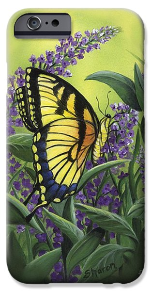 Lilacs Drawings iPhone Cases - Butterfly 2 iPhone Case by Sharon Molinaro