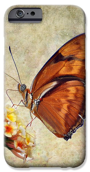 Insect Pyrography iPhone Cases - Butterfly iPhone Case by Savannah Gibbs