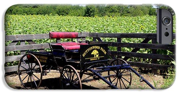 Buttonwood Farm iPhone Cases - Buttonwood Farm CT USA iPhone Case by Kim Galluzzo Wozniak
