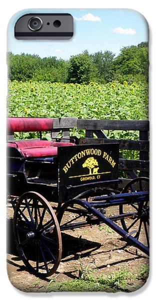 Buttonwood Farm CT USA iPhone Case by Kim Galluzzo Wozniak