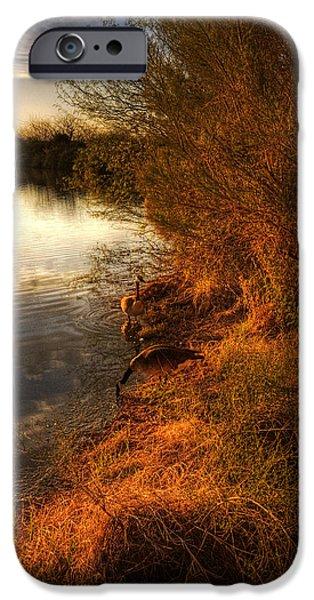 By The Evening's Golden Glow iPhone Case by Saija  Lehtonen