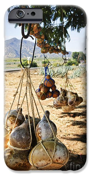Gourd iPhone Cases - Calabash gourd bottles in Mexico iPhone Case by Elena Elisseeva