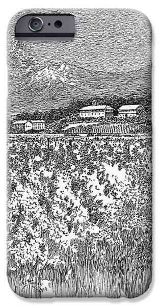 CALIFORNIA: VINEYARD, 1889 iPhone Case by Granger