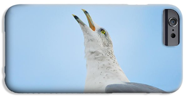 Flying Seagull iPhone Cases - Call of the Wild iPhone Case by Bill Cannon