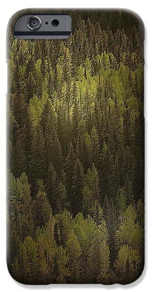 Canadian Forest - The woods are lovely dark and deep iPhone Case by Christine Till