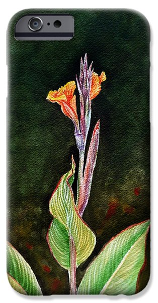 Canna iPhone Cases - Canna Lily iPhone Case by Irina Sztukowski