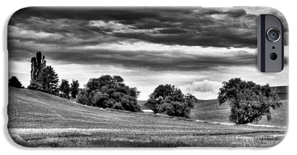 Monotone iPhone Cases - Canola Among the Wheat III iPhone Case by David Patterson