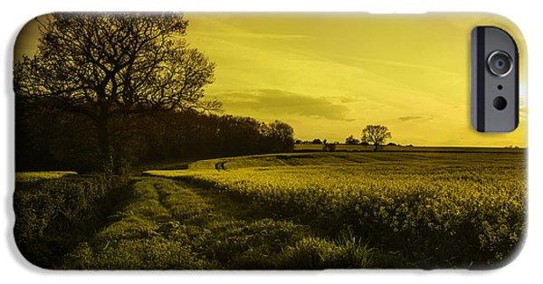 Canola Field iPhone Cases - Canola Field At Sunset iPhone Case by Amanda And Christopher Elwell