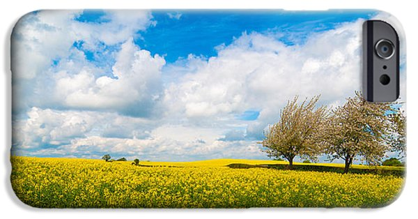 Canola iPhone Cases - Canola Field Panorama iPhone Case by Amanda And Christopher Elwell