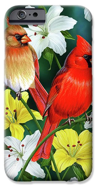Home iPhone Cases - Cardinal Day 2 iPhone Case by JQ Licensing
