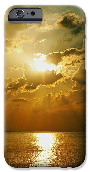 Carpe Diem iPhone Case by Andrew Paranavitana