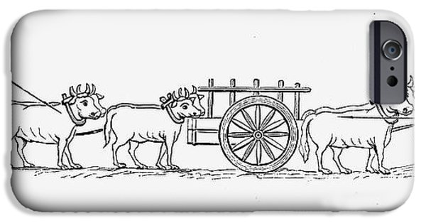 11th iPhone Cases - CARTS, 11th CENTURY iPhone Case by Granger