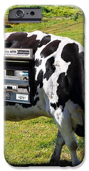 Cash Cow . 7D16140 iPhone Case by Wingsdomain Art and Photography
