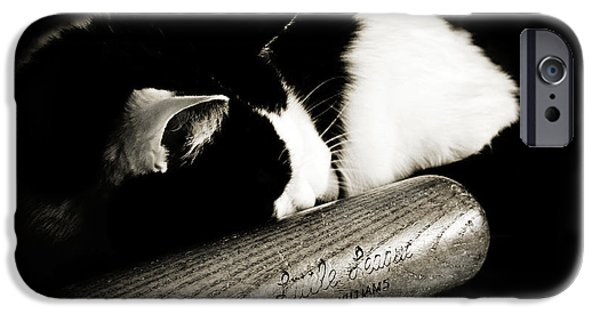 Boston iPhone Cases - Cat and Bat iPhone Case by Andee Design