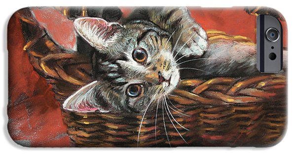 Basket Pastels iPhone Cases - Cat in the basket iPhone Case by Ylli Haruni
