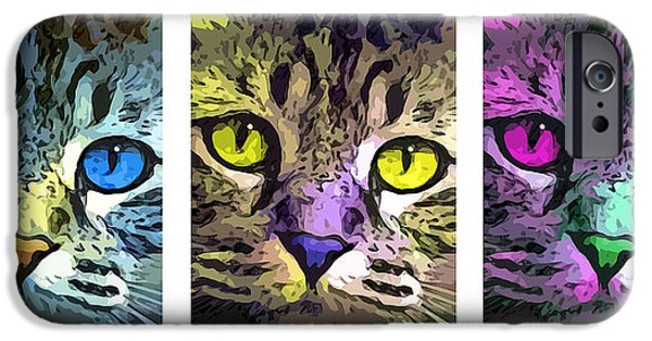 American Shorthair iPhone Cases - Cat iPhone Case by Stephen Younts