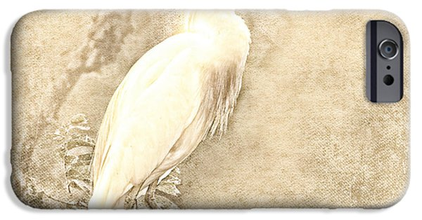 Cattle Egret iPhone Cases - Cattle Egret Mono iPhone Case by Betty LaRue