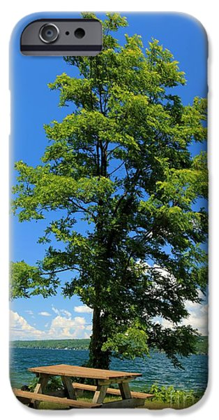 Taughannock Falls State Park iPhone Cases - Cayuga Picnic iPhone Case by Adam Jewell