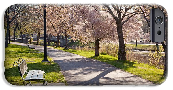 Best Sellers -  - Charles River iPhone Cases - Charles River Cherry Trees iPhone Case by Susan Cole Kelly