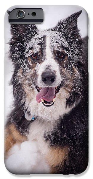 Chasing the Snow iPhone Case by Joye Ardyn Durham