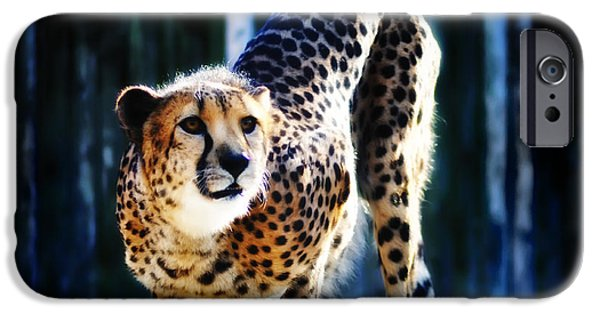 Cheetah Digital Art iPhone Cases - Cheeta iPhone Case by Bill Cannon