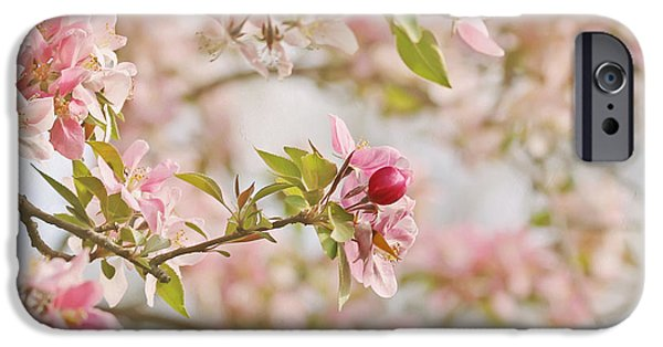 Cherry Blossoms iPhone Cases - Cherry Blossom Delight iPhone Case by Kim Hojnacki